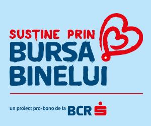 bursabinelui-banner3